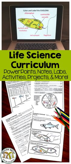 Life Science Curriculum Unit - includes PowerPoints, student notes, activities, projects, labs, study guides, tests, teacher keys, and more!