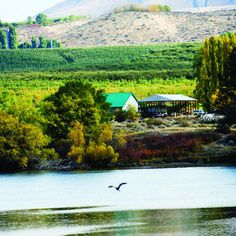 Apple country: Lake Entiat in Washington
