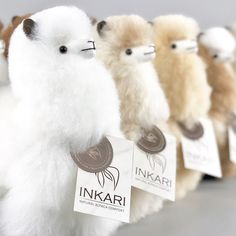 We still have some beautiful small alpacas in stock on our website! Alpaca Toy, Llama Alpaca, Alpacas, Funny Animal Pictures, Funny Animals, Alpaca Stuffed Animal, Stuffed Animals, Alpaca Gifts, Animals Of The World