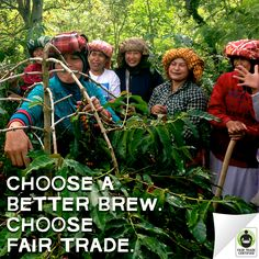 We're heading to #SCAA2016 to talk, sip & grow the #FairTrade movement! We'll be serving delicious brews alongside Fair Trade #coffee producers like the incredible women of Ketiara, a cooperative founded by widows of the Aceh civil war. Read their story here: http://fairtrd.us/1N71bJB #SCAA