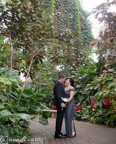 Last wedding of the year!! The Meijer garden is a beautiful backdrop!  #meijergardens #lastweddingoftheyear #2016 #grandrapids #tropical #palmtrees #christmaswedding #grandrapidsweddingphotographer