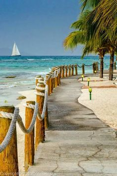 Beachfront at Palm Island Resort, St. Vincent & The Grenadines (par John Piekos) Beachfront at Palm Island Resort, St. Vincent & The Grenadines (par John Piekos) Dream Vacations, Vacation Spots, Romantic Vacations, Italy Vacation, Romantic Travel, I Love The Beach, Images Of The Beach, Photos Voyages, Island Resort