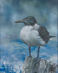 Sea Life paintings by contemporary artist and sculptor, Barbara Stroer - acrylics on canvas with spray paint.