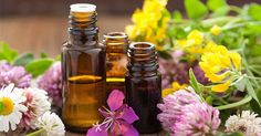Essential Oils are becoming very popular these days and for good reason. The benefits and uses of essential oils is endless. I use essential oils daily. It may be frankincense oil on my face, lavender oil for a burn or a whiff of sweet orange for a … Read Essential Oils For Cough, Essential Oils Guide, Essential Oil Uses, Pure Essential, Home Remedies, Natural Remedies, Herbal Remedies, Allergy Remedies, Allergy Symptoms