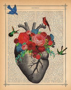 Love Blossom Heart Art Print Birds Cardinal by BlackBaroque, $10.00