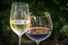 Vinhos da Eslovênia Em 2 Taças Douradas | Vinhos de Hoje