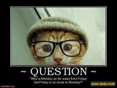 ~ QUESTION~