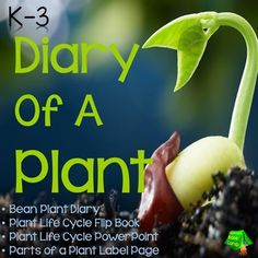 Plant Life Cycle - This Plant Life Cycle unit will literally bring plants to life.  After beginning with a PowerPoint presentation with real photographs showing the life cycle of a plant, students will plant a bean seed and keep a diary of the plant.  The Plant Diary is a tab book designed for young learners.