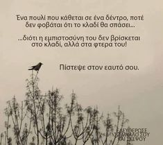 Find images and videos about greek ελληνικά guotes on We Heart It - the app to get lost in what you love. Smart Quotes, Clever Quotes, Cute Quotes, Happy Quotes, Best Quotes, Funny Quotes, Advice Quotes, Old Quotes, Greek Quotes