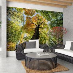 Strom - fototapeta Samolepící vinylová tapeta 300 x 220 cm