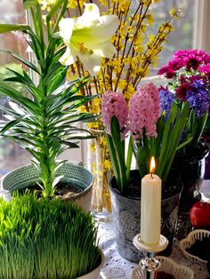 Happy Year, Culture Travel, New Day, Iran, Holidays, Table Decorations, Traditional, Beautiful, Home Decor