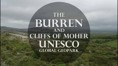 Whatever your interest, from archaeology to adventure, from geology to botany, there is something in the Burren and Cliffs of Moher Geopark that will stop yo. Alpine Plants, Cliffs Of Moher, Ireland Travel, Botany, Geology, Archaeology, Travel Destinations, Around The Worlds, Tours