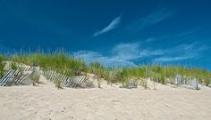 HAMPTON'S BEACHES: Most Gay-Friendly: Two Mile Hollow in East Hampton. Speedos as far as the eye can see.