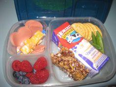school lunch ideas in EasyLunchBox