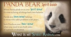In-depth Panda Bear Symbolism & Panda Bear Meanings! Panda Bear as a Spirit, Totem, & Power Animal. Panda Bear in Celtic & Native American Symbols & Dreams!