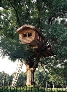 amateur teens record sex in treehouse