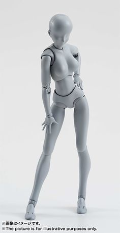 BANDAI S.H.Figuarts Body-chan DX Set (Gray Color Ver.) Action Figure