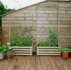 Tonette blogger: Plantekasser