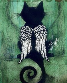 I need something like that for my Suki girl - Hunde und Katzen Crazy Cat Lady, Crazy Cats, I Love Cats, Cool Cats, Gato Angel, Pet Loss Grief, Black Cat Art, Black Cats, Black Kitty