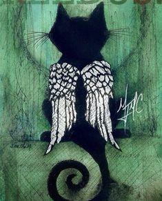I need something like that for my Suki girl - Hunde und Katzen Cool Cats, I Love Cats, Crazy Cat Lady, Crazy Cats, Gato Angel, Pet Loss Grief, Black Cat Art, Black Cats, Black Kitty