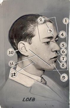 """""""TRIAL EVIDENCE"""" phrenology card for Richard Loeb from the infamous Leopold and Loeb trial in 1924"""