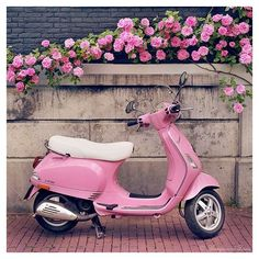 16 Sweet Pictures of Scooters ❤ liked on Polyvore featuring backgrounds, pictures, icons, pink, photos, quotes, text, phrase and saying