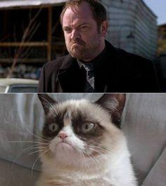 Crowley is Grumpy Cat