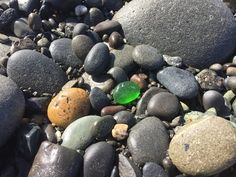 Agate Hunting and Identification at Ocean Shores, WA - YouTube
