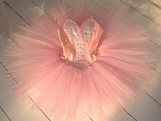 pink tutu with silver bodice decoration