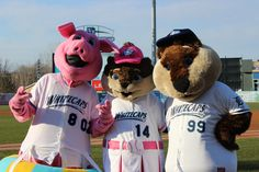 Franky, Roxy, and Crash, West Michigan Whitecaps mascots; Midwest League