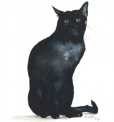 rachel stockham - The Stare - Artists & Illustrators - Original art for sale direct from the artist Original Art For Sale, Original Artwork, Black Cats, Cat Art, Illustrators, The Originals, Abstract, Pets, Gallery