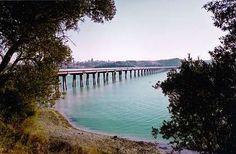Adana, Seyhan #Lake