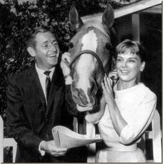 Mister Ed was a fictional talking horse the TV show ran January 5, 1961 – February 6, 1966 Starring Alan Young Connie Hines and Bamboo Harvester as Mister Ed Allan Lane (voice only) as Mister Ed
