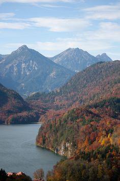 Fall leaves Alpsee bei Schwangau Hohenschwangau near Füssen Bavaria, Germany