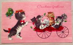"""Mama Cat pushing her. C irca 1950's ~ Hampshire. This card is signed. Single Fold ~ Measures 3 1/2"""" x 6"""". you an invoice. 