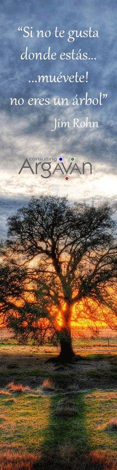 """""""Si no te gusta donde estás...muévete! no eres un árbol"""" Jim Rohn Frases de inspiración y motivación."""