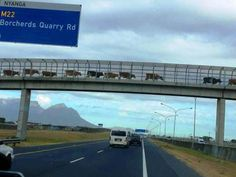 Meanwhile in South Africa South Afrika, Cape Town South Africa, Meanwhile In, African Safari, My Land, Continents, Beautiful Places, Scenery, Places To Visit