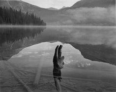 Stump, Early Morning Mist, Emerald Lake, Canada, 1988. John Sexton