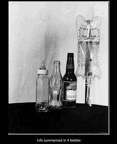 Life Summarized In 4 Bottles