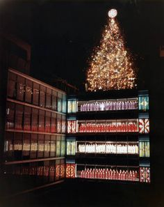 Rich's department store Christmas event with Great Tree :: Broadcasting Collections