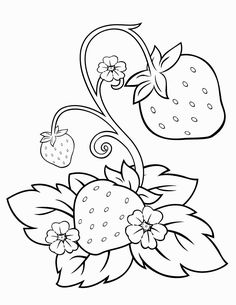 We have collection of fresh strawberry coloring pages to choose from. The illustration of pictures is fairly basic and meant for youngsters, but some Fruit Coloring Pages, Colouring Pages, Coloring Pages For Kids, Coloring Books, Coloring Sheets, Free Coloring, Hand Embroidery Patterns, Applique Patterns, Quilt Patterns