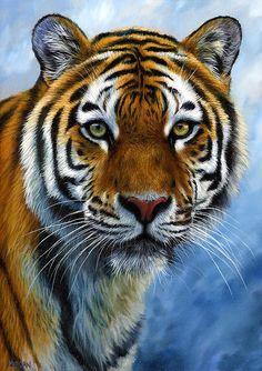 Tiger Print Print By Jason Morgan