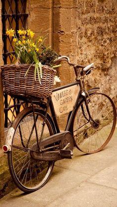 Mon vélo de rêve