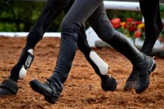 Matching Strides With Your Horse.....#HorseLyfe