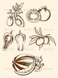 Google Image Result for http://3.s3.envato.com/files/29142246/vegetables590.jpg
