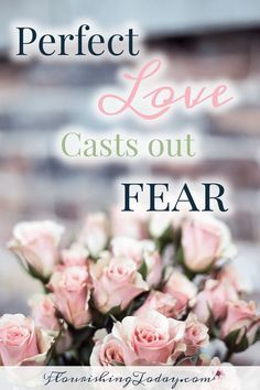 What fears are you holding onto today? Fear can hold us back from living an abundant life. But perfect love casts out fear; and that love is found in God. Valentines Day Sayings, Valentine Ideas, Valentine Cards, Valentine's Day Quotes, Rose Quotes, Flower Quotes, Fact Quotes, Morning Quotes, Daily Quotes