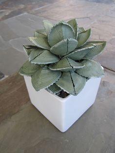 Karen Robertson Collection - Large Heart Shell Succulent