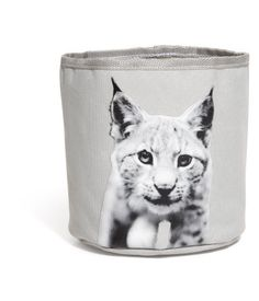 According to H & M Home ... photos of animals (etc) on pillows and other home accessories is really in! Better get on it!