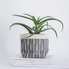 NOVELLA is a contemporary Cape Town based decor, design & homeware brand. The collection includes local patterns, fabrics and home accessories. Tobias, Cape Town, Home Accessories, Planter Pots, Archive, Presents, Plants, Design, Decor