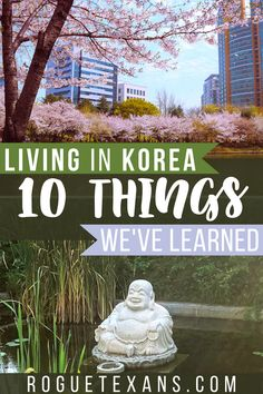 Are you curious what things are like in South Korea? You might be surprised! Read our post to find out what we've found interesting while living in Korea as American expats! China Travel, Bali Travel, Japan Travel, Travel Usa, Travel Abroad, Cool Places To Visit, Beautiful Places To Visit, Amazing Places, Travel Guides